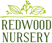 Redwood Nursery